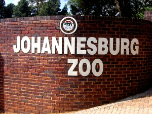 Joburg Zoo building